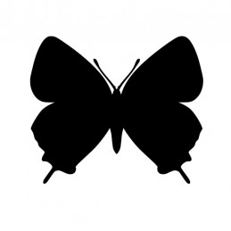 Stickers Papillon 15