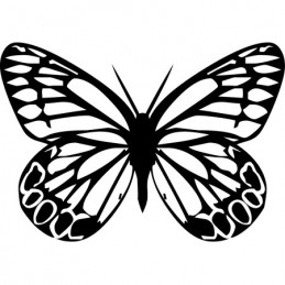 Stickers Papillon 10