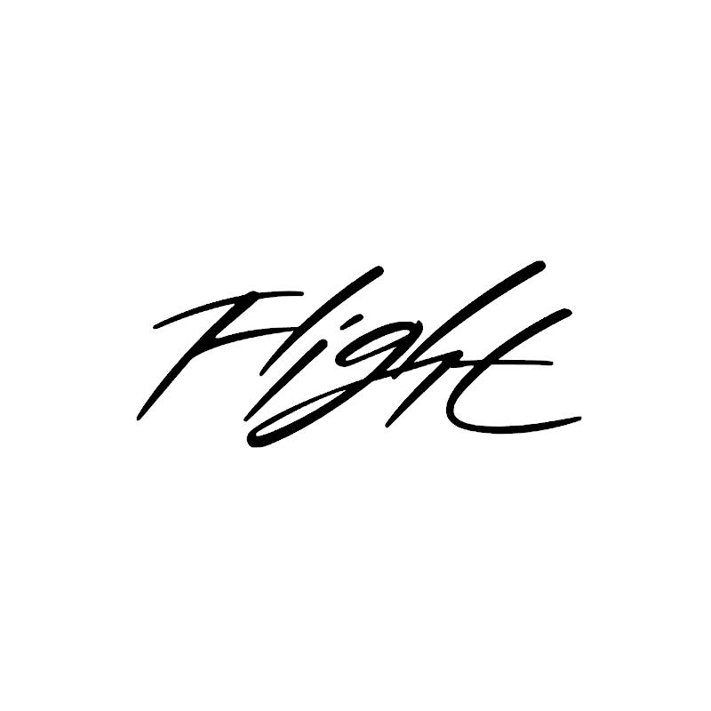 Stickers Jordan Flight